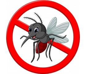 L'estate dalla A alla Zanzara: utili consigli per difendersi dagli insetti